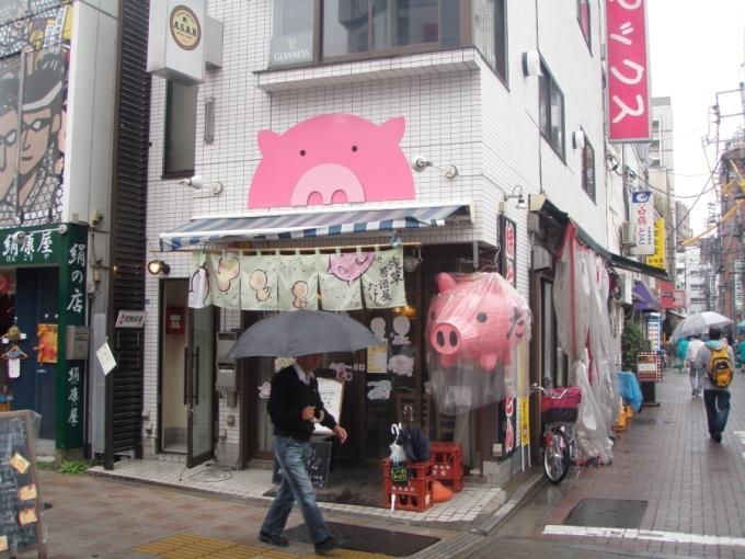Tokio - świnki