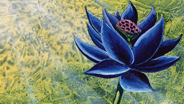 black lotus vintage